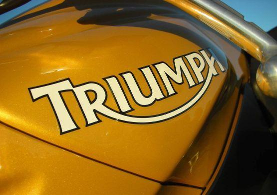 Triumph web