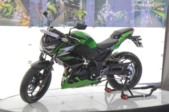 Kawasaki Z250 web
