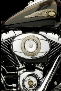 Popes Harley-Davidson 110th anniversary Heritage Softail Classic 4