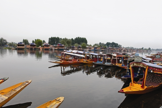 Triumph Tiger Travelogue 6 - Srinagar 1 web