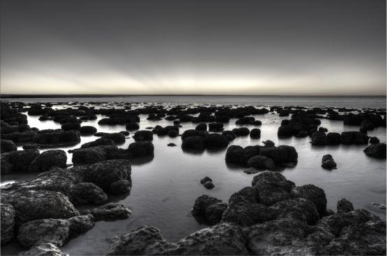 The Stromatelites, Sharks Bay, Australia web