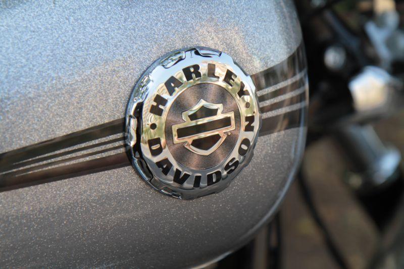 2015 Harley Davidson new 2016 lineup web