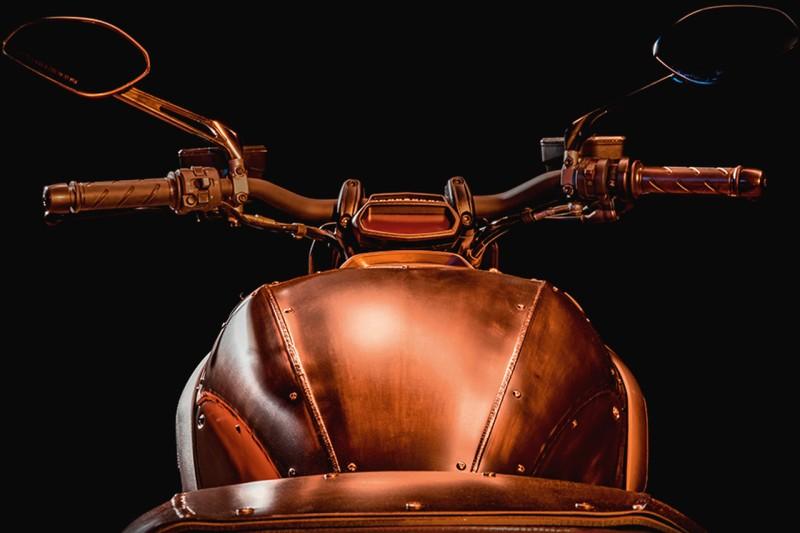 Ducati Diavel Diesel web 2
