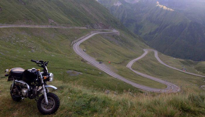 Epic Monkey Run Adventure Heading to Romania