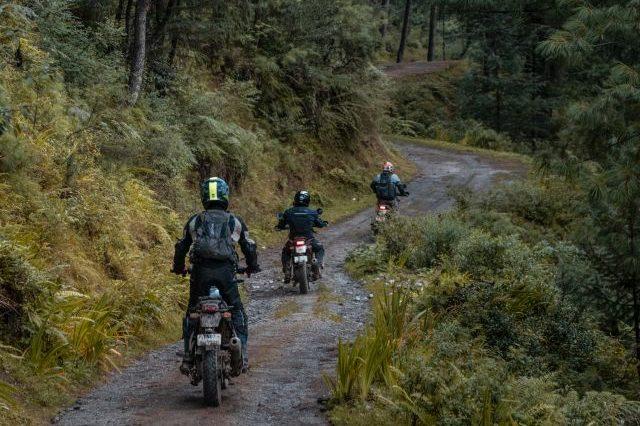 Royal Enfield Unroad Himachal - A beautiful trail on the way to Sajwar, Himachal Pradesh, India