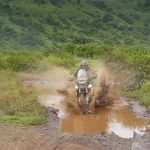 Triumph Tiger 900 Rally First Ride Review: Top Cat