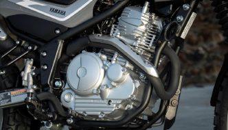 Yamaha FZ-X 250 ADV Incoming